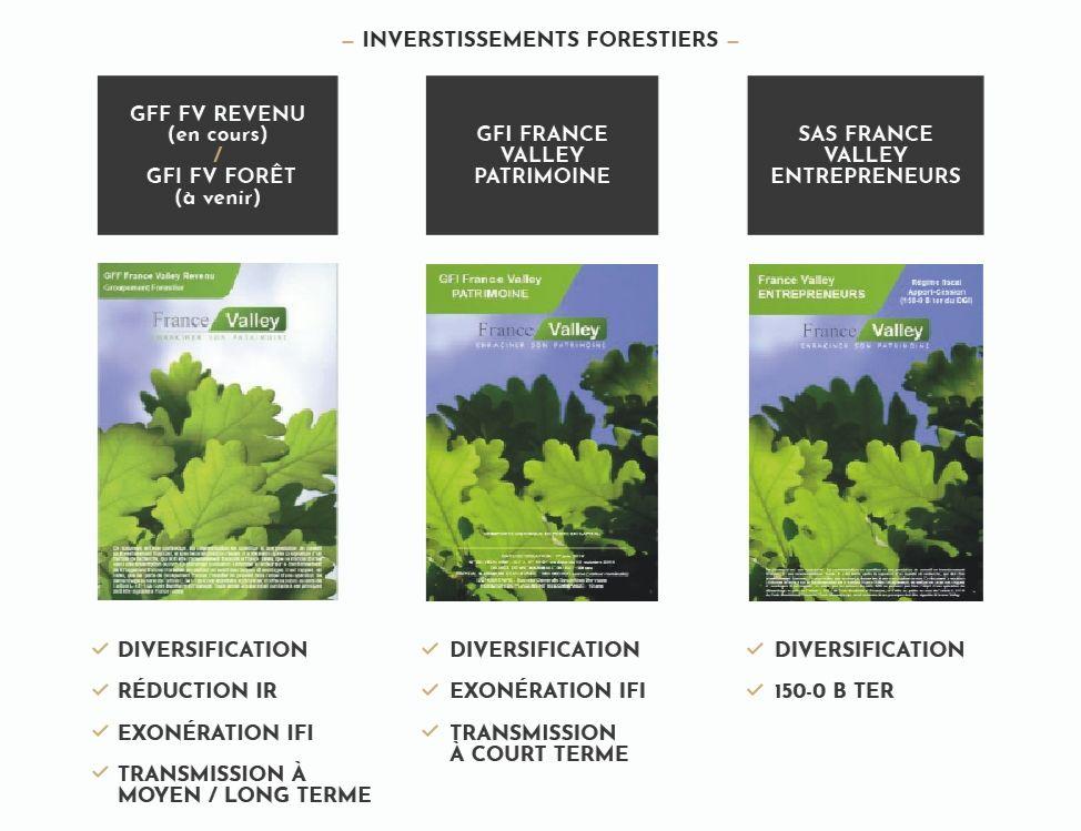 Types d'investissements forestiers et gestion de patrimoine